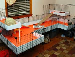 Guinea Pig House Plans C And C Cage Layout With Lofts Guinea Pig Cage Ideas Cavy Diy My Boys The Two