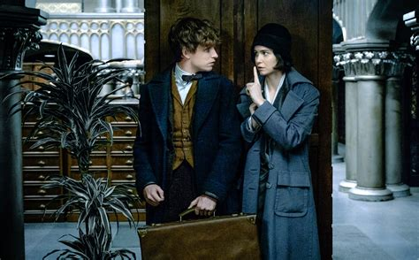 summary of fantastic beasts and where to find them by j k rowling books review fantastic beasts and where to find them boonepubs