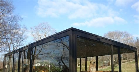 Glass Houses Stones by Pet A Cat Today No Throwing Stones In Glass Houses