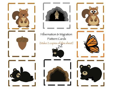 kindergarten activities on hibernation hibernation migration printable preschool printables