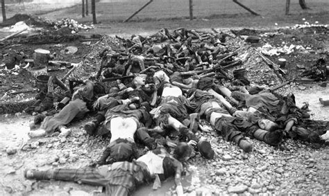 the holocaust in history holocaust