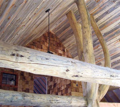 staining tongue  groove ceiling  trend home