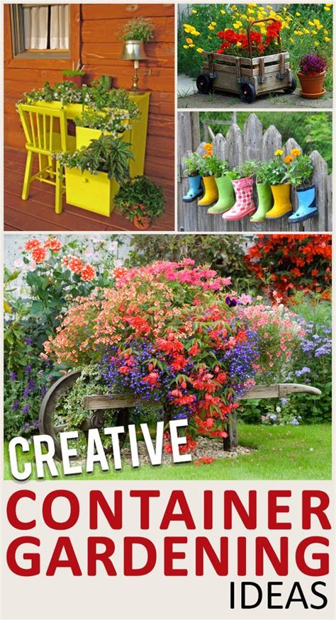 Unique Container Gardening Ideas Container Gardening Gardening And Gardening Hacks On