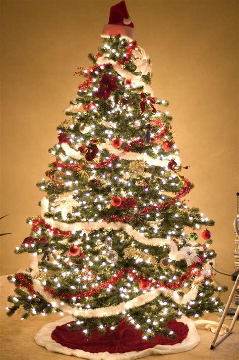 alberi di natale illuminati albero di natale bianco e boredeaux illuminato festivita