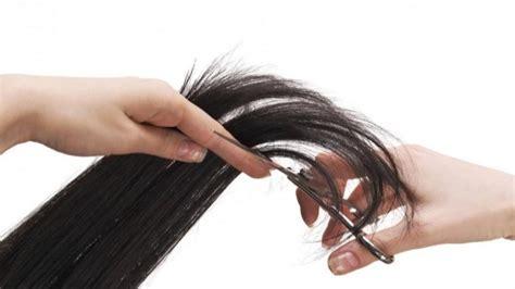 how to cut hair using hair cutting images usseek
