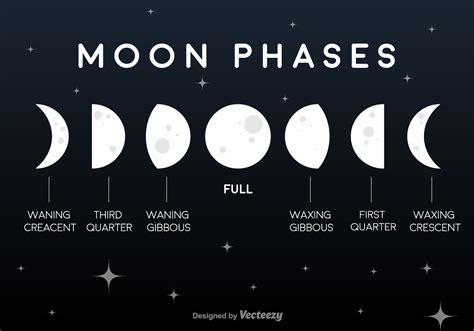 moon phase vector flat moon phases icons download free vector art