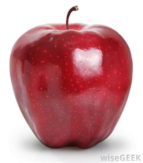 apple france what are the different types of apples with pictures