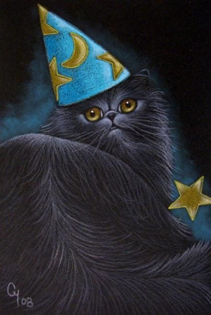 wizard cat wizard hat drawing