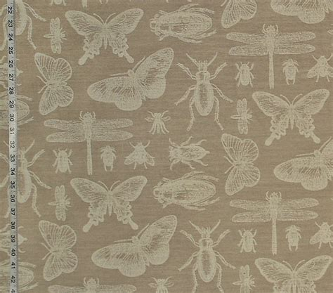dragonfly upholstery fabric dragonfly upholstery fabric related keywords dragonfly