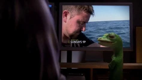 geico boat insurance commercial song geico tv commercial national geographic society ispot tv