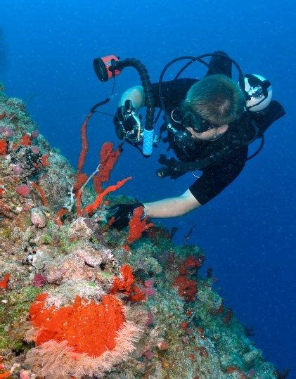 dive packages scuba dive kadavu package matava