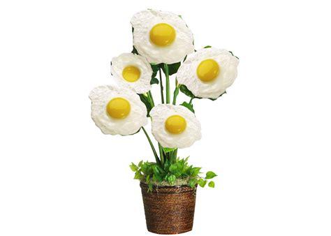 visual pun egg plant meghan s blog visual puns