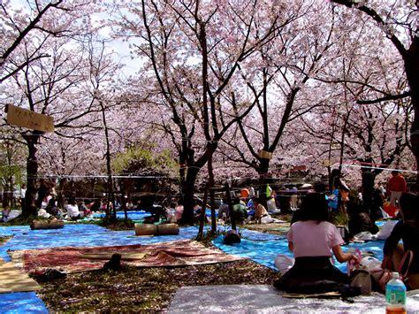 blue mat reservations animefanatika