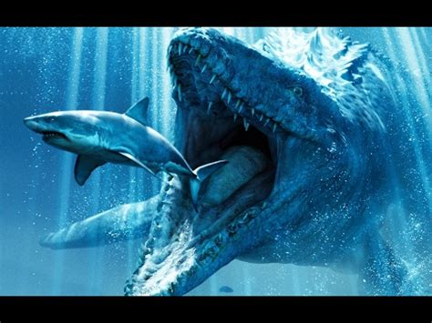 megalodon sharks still lives evidence that megalodon is not extinct megalodon buzzpls com