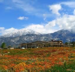 Garden Center Yucaipa Ca The City Of Yucaipa Southern California S Backyard