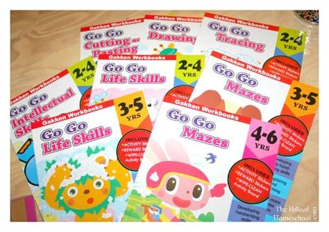 Gakken Work Book Intellectual Skills 2 4 Years motor skills workbooks for preschool kindergarten