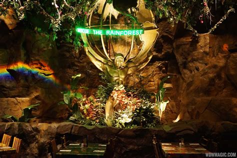 Free Dining Room Table by Rainforest Cafe Disney S Animal Kingdom