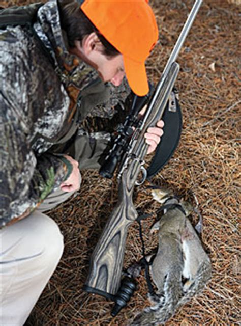 5 house hunting tips for any season cinthia ane real squirrel hunting tips game fish