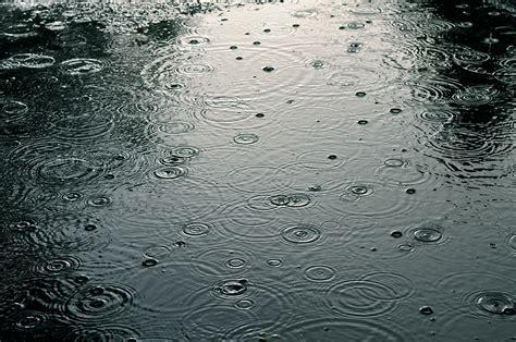 rainy days das de rainy day puddles celladele