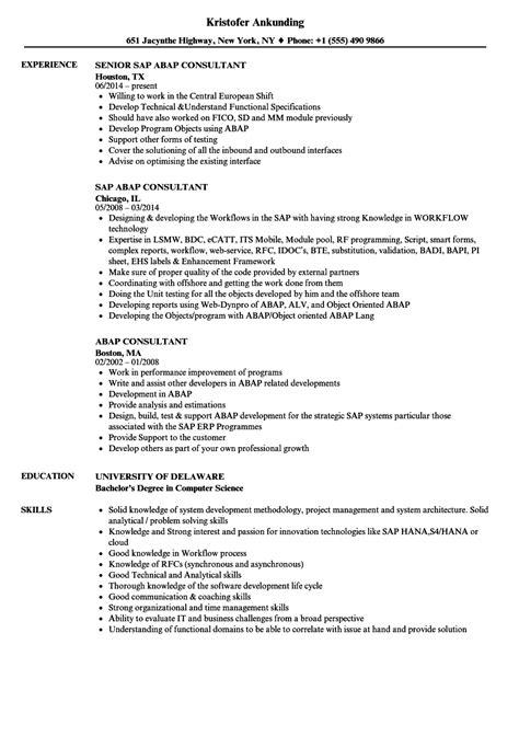 easy sap sample resume mm for sap sd sample resume madrat krida info