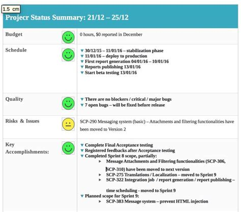 software development status report template weekly status report template free premium
