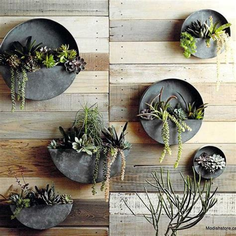 pretty hanging planters   hgtvs decorating