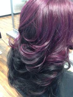 black amethyst hair color 1000 images about haircolor on shades of