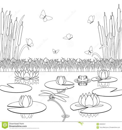 free coloring pages pond animals coloring page with pond inhabitants and plants stock