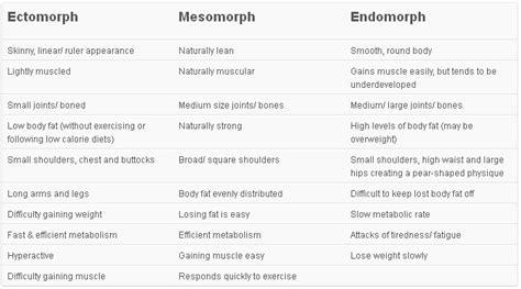 a bodybuilders diet mesomorph type