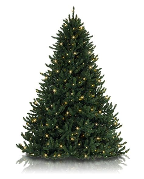 how to shape and fluff an artificial christmas tree blog