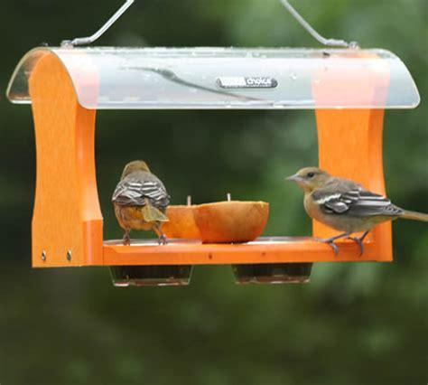 duncraft com birdschoice fruit jelly oriole feeder