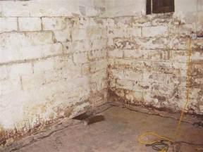 best waterproof paint for basement walls waterproofing basement walls