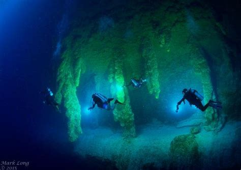 belize dive delivered to the cave dive site picture of belize
