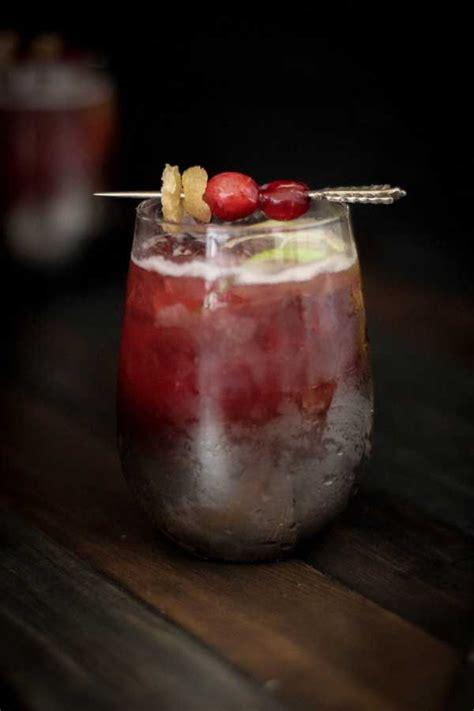 christmas cocktail recipes 361 best delicious drink recipes with berries images on