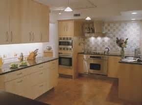 Kitchen Designs Gallery Contemporary Kitchen Kitchen Design Ideas Kitchen Design