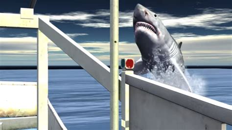 great white shark jumps in boat great white shark jumps into research boat youtube