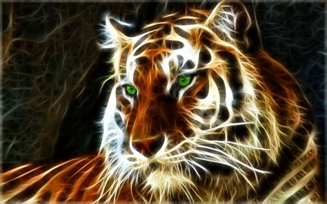 real tigers wallpaper  full hd   top model hairstyle