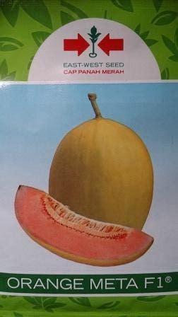 melon daging orange aroma lmga agro jual produk pertanian harga murah dan