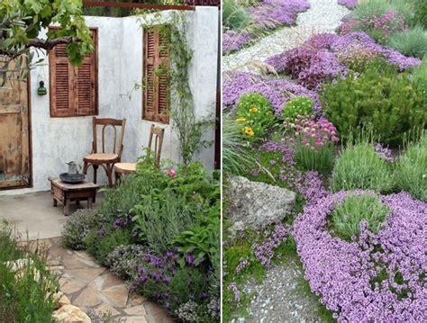 giardino mediterraneo foto giardino mediterraneo de valeria treste 315689
