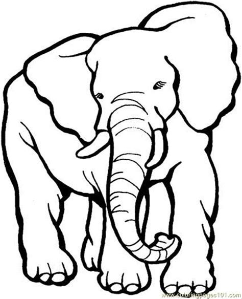 printable pictures elephants coloring pages elephant 9 coloring page animals