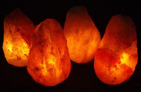 where can i buy a salt rock l best price himalayan salt l great deals