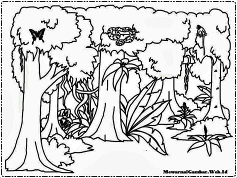 Tropical Rainforest Coloring Page Coloring Pages Ideas Tropical Coloring Pages