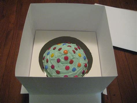 diy cake cavey cakes diy cake box for cupcake