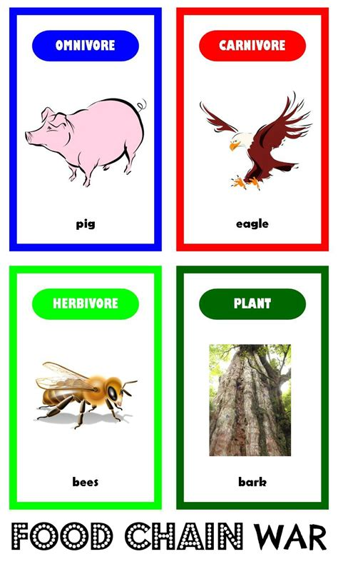 food chain template cards relentlessly deceptively educational food chain war