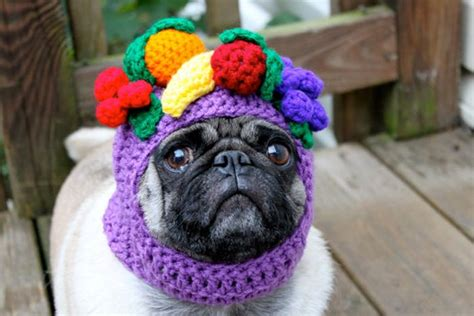 pugs with hats pug hats 1funny