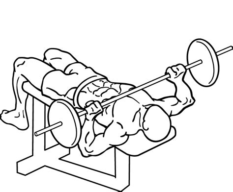 different types of bench press bars decline bench press add this lower chest exercise to your next chest workout