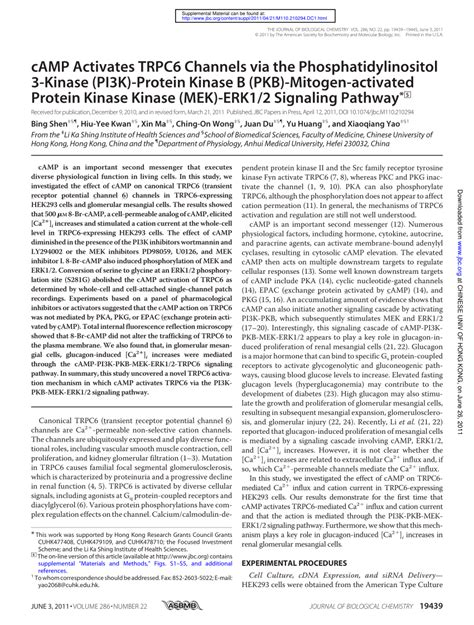 protein kinase b c activates trpc6 channels via the phosphatidylinositol