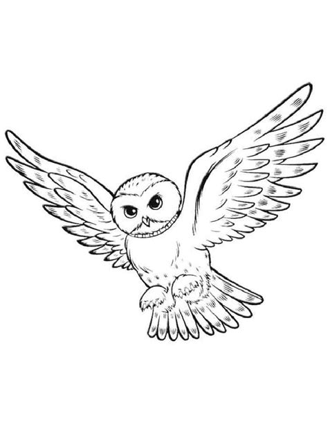 owl coloring pages download and print owl coloring pages