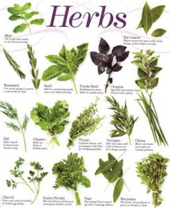 herbs naturalherbal supplier and herbal specialist