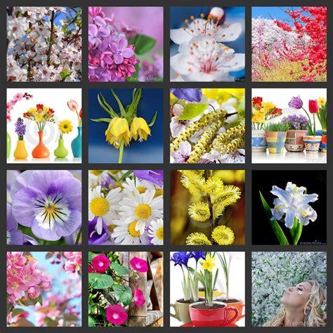 pinterest flower gardens